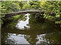 NS8594 : Cambus Iron Bridge by William Starkey