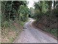 TM1937 : Richardsons Lane looking south, Woolverstone by Roger Jones