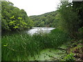 NT6272 : Pressmennan Lake and Wood by M J Richardson