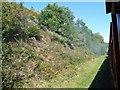 SE2211 : Wide railway cutting, narrow railway by Christine Johnstone