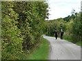 SE4035 : Walkers on Ellis Lane by Christine Johnstone