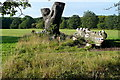SU7276 : Crocodile in Caversham Park by Graham Horn