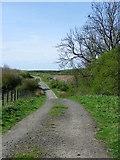 NZ2289 : Bridleway, Longhirst by Maigheach-gheal