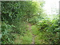 SU8724 : Footpath 3329 on the edge of Pound Common access land by Dave Spicer