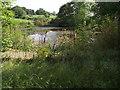 SD7509 : Fishing pond on Ainsworth Hall Road by Philip Platt