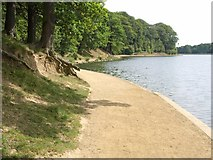 SE3337 : Path by Waterloo Lake by Derek Harper