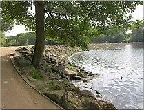 SE3337 : Dam, Waterloo Lake by Derek Harper
