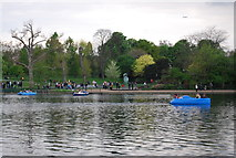 TQ2780 : Looking across The Serpentine by N Chadwick