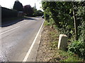 TL1066 : 62 Miles From london by Keith Evans