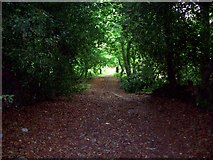 SK3463 : Ancient Track over Marsh Brook by Jonathan Clitheroe