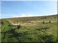 TQ3404 : Sheepcote Valley by Simon Carey