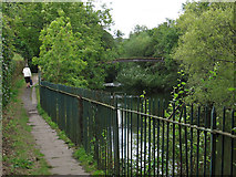 SE1039 : Bingley - bank of River Aire by Dave Bevis