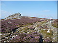 SO3698 : Manstone Rock on the Stiperstones by Jeremy Bolwell
