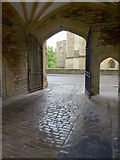 ST5545 : Beneath the Vicars' Hall, Wells by Derek Harper