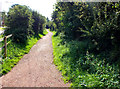 SJ8562 : Entering the park by Jonathan Kington