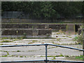 TQ2670 : Disused filter beds (1) by Stephen Craven