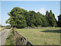 SP2280 : Former grounds of Mercote Hall by Robin Stott