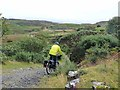 NM4239 : Rough cycling on Ulva by Oliver Dixon