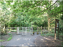 TQ4468 : Cyclepath junction on Petts Wood Junction by David Anstiss