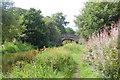 SJ9065 : Bridge 58, Macclesfield Canal by Trevor Harris
