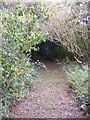 TM2158 : Footpath to Yew Tree Farm by Adrian Cable