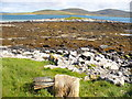 NF8980 : Foreshore by Eilean an Dunain by Colin Smith