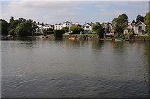 TQ1673 : The Thames near Eel Pie Island by Philip Halling