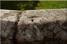 SJ4065 : Pivot Bench Mark, City Walls by Mark Anderson