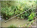 TQ0231 : River Arun at Ifold Bridge by Colin Smith