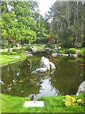 TQ2479 : The pond in the Kyoto Garden in Holland Park by Rod Allday