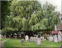 TQ4412 : St Mary's churchyard by Paul Gillett