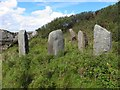 C3332 : Standing stones, looking north by Kenneth  Allen