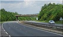 TG1607 : B1108 bridge, A47 by N Chadwick