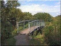 TQ4210 : Footbridge Lewes Railway Land LNR by Paul Gillett