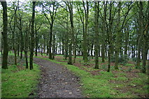 SD6212 : Footpath above Lower Rivington Reservoir by Bill Boaden