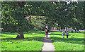 TQ4598 : Riding through Theydon Green by Roger Jones
