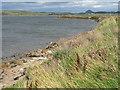 NT4580 : Aberlady Bay from Kilspindie by M J Richardson