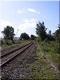 TM2850 : Railway Line to Woodbridge by Adrian Cable
