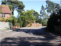 TM2750 : Godfreys Wood, Melton by Adrian Cable