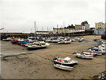 SN1300 : Tenby Harbour by David Dixon