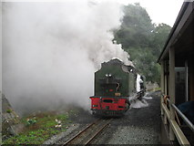 SH4862 : A good head of steam at Caernarfon by Gareth James