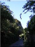 TM2649 : North Hill, Woodbridge by Geographer