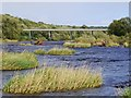 NZ0863 : Islands in the River Tyne above Ovingham Bridge by Andrew Curtis