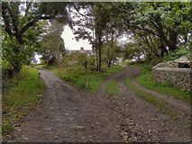 SM7525 : Track Near The Bishop's Palace by David Dixon
