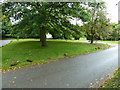 SP9626 : Grass triangle opposite the parish church by Basher Eyre