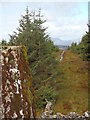 NX7082 : Moss covered trig point on Blackcraig Hill by Bob Peace