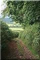 SX8978 : Haldon Lane by Hugh Craddock