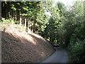 SX8182 : Steep hill on Beadon Lane  by Robin Stott