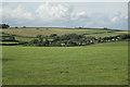 SX8183 : Moor Barton  by Robin Stott