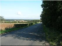 SE5214 : Whiteley Road towards Little Smeaton by JThomas